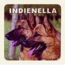 indienella