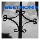 beethonin